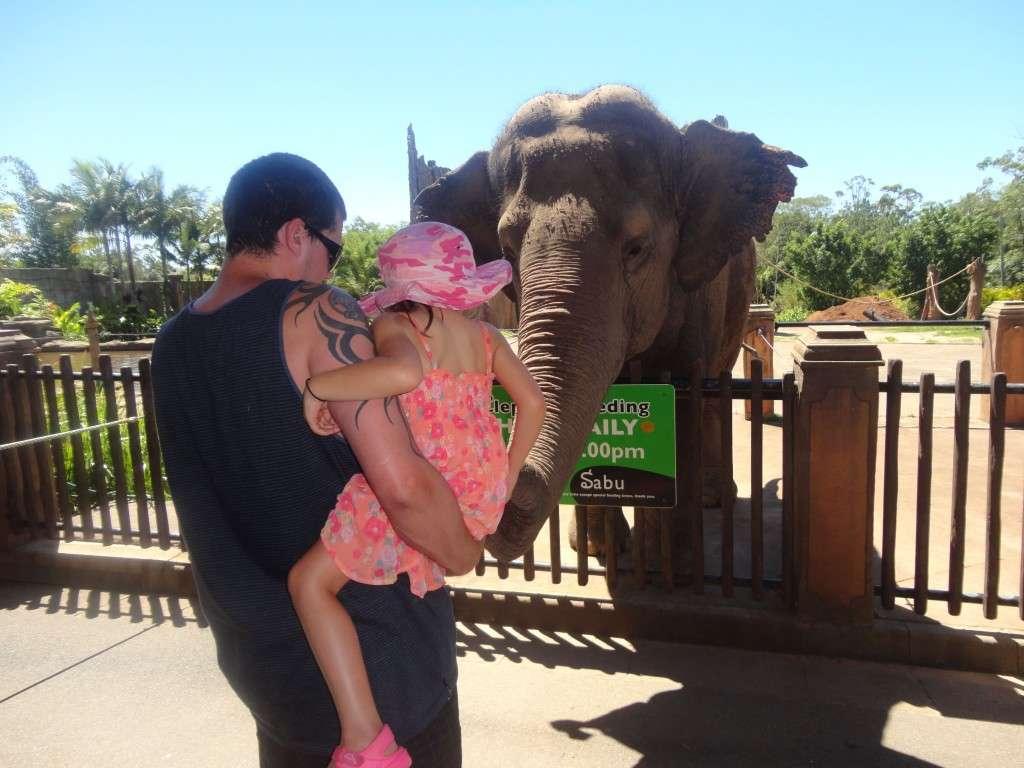 Australia Zoo3