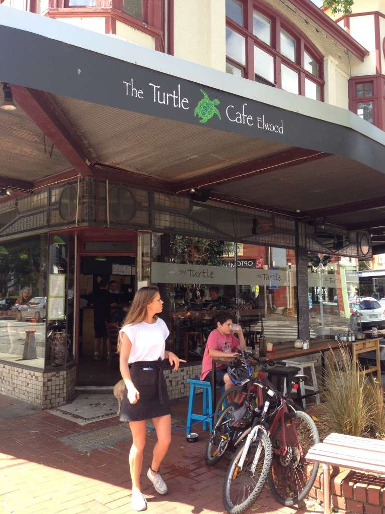 Turtle cafe 6