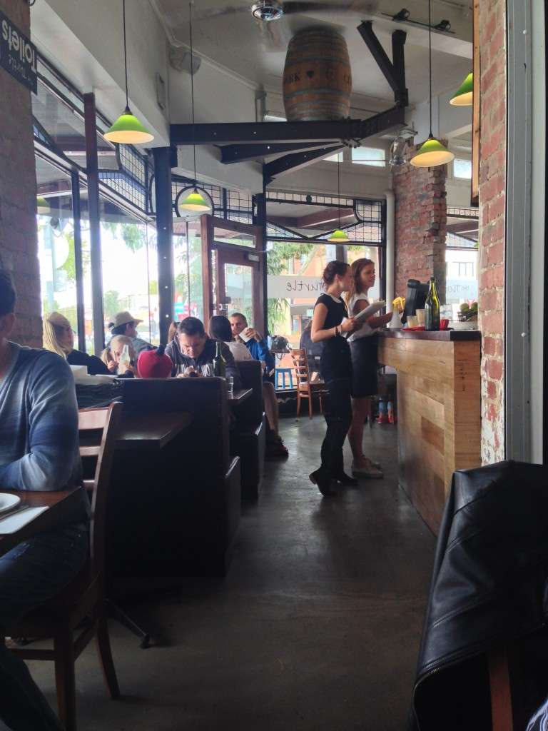 Turtle cafe 8