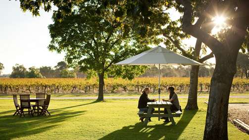 campbells_winery_hc_r_1289044_503x283